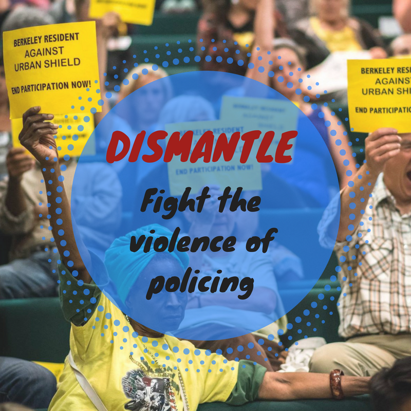 DISMANTLE fight policing